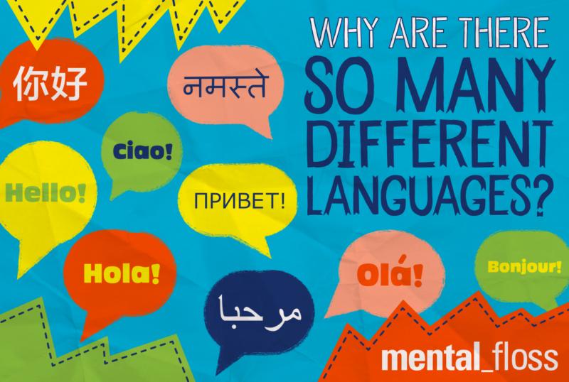Increase Customer Engagement With Translation Websites