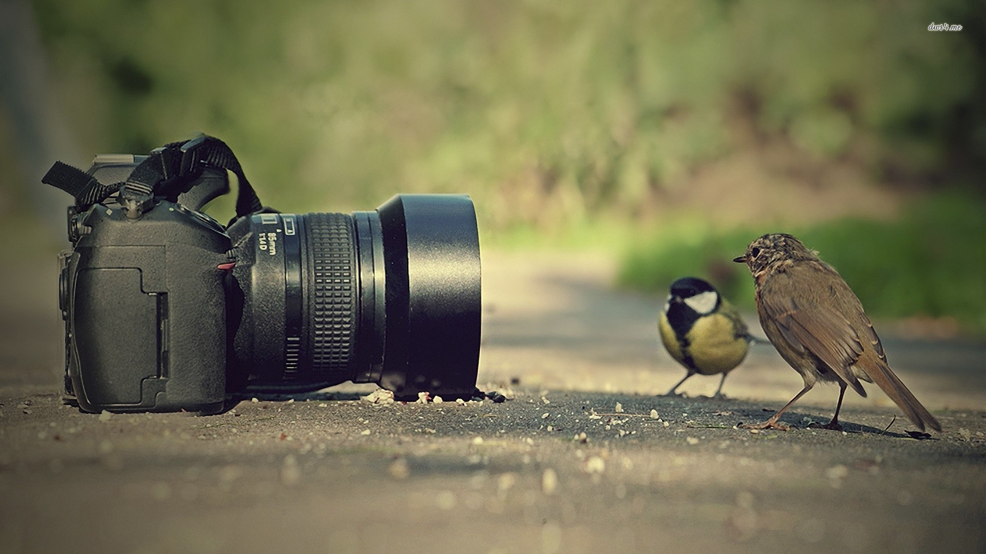 Some Tips on Creating Attractive Social Media Videos For Marketing